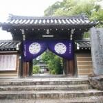 【京都結婚物語ご結婚式】大原野神社挙式予定 フォトウエディング 植物園・岡崎別院にて