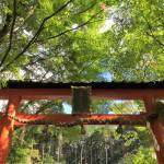 【京都結婚物語】大原野神社 西洋酒樓 六堀での披露宴が行われました。