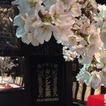 京都結婚物語婚活イベント「蔵婚 春~さくら~」終了いたしました。