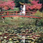 大原野神社婚礼