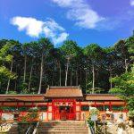 【京都結婚物語】どこいこ?京都〜大原野神社・300年続く神事、御田刈祭〜